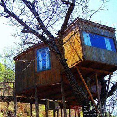 建筑设计源自于湖南凤凰古镇的江边吊角楼,我们用防腐的杉木交错搭建
