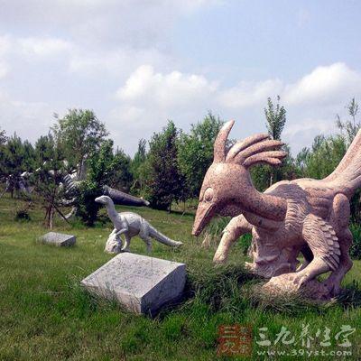 哈尔滨北方森林动物园貂