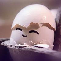 鸡蛋的营养价值高 吃鸡蛋应避开5个误区