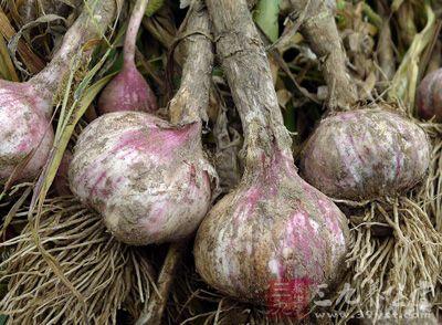 大蒜的功效与作用 大蒜的抗癌与减肥功效