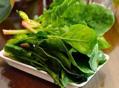 菠菜的营养功效