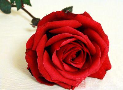 玫瑰花0.3克茉莉花0.3克
