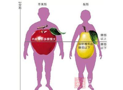 人体脂肪_在了解之前,我们先了解脂肪是怎么在人体堆积的,然后才能够很好的控制