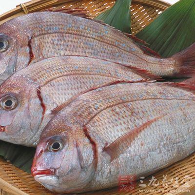 蟹等海产品的动物绝对不能吃