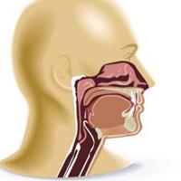 治疗鼻咽癌的中药方剂