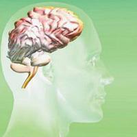 治疗脑瘤的中药方剂