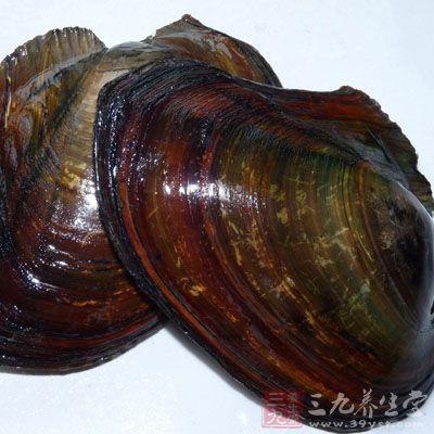 河蚌怎么洗 學會正確的清洗才吃的放心圖片