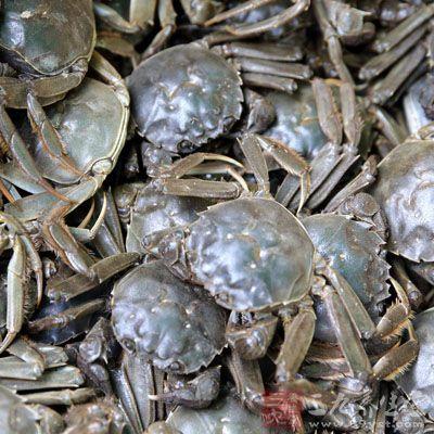 将河蟹放入清水中吐净污物