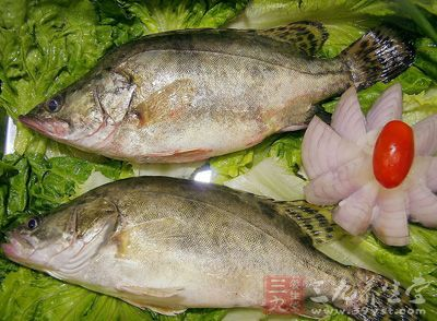 桂鱼的做法大全 怎样做出美味的桂鱼佳肴