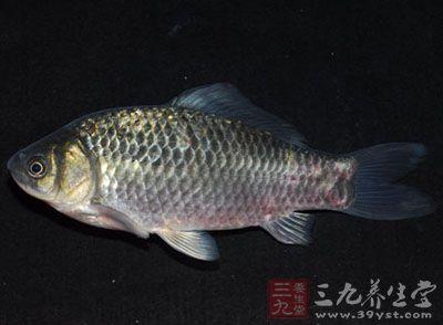 配方:鲫鱼1条,粳米50克