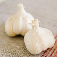 大蒜的功效与作用 秋季吃蒜竟有这神效
