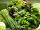 健康长寿离不开这两抹绿