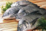三高人群多吃鱼 看鱼的少油做法