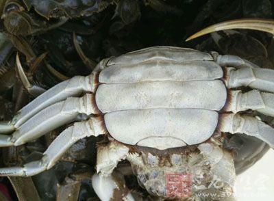 螃蟹壳手工制作大全图解