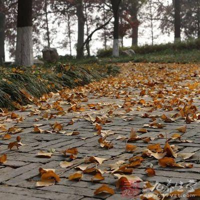 立秋后阳气便会转衰,阴气日上