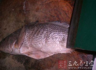 将鱼刮洗干净,在鱼背上割上斜花刀