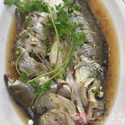 能在鱼肉中摄取大量蛋白质