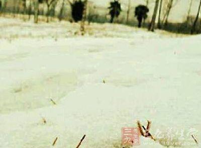 小雪节气养生 冬季防寒保暖的法宝