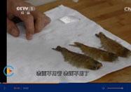 20151201天天饮食视频:殷小仪讲盐焗虾的做法