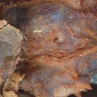 牛肉食疗偏方 吃它能治一些病症