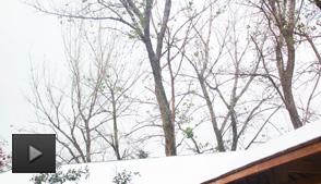 冬季养生的重点是什么