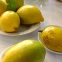 吃蛋黄果能止咳化痰