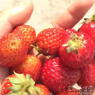 草莓的营养成分容易被人体消化、吸收,多吃也不会受凉或上火