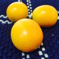 金桔的营养价值 常吃金桔能够预防感冒