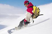 大寒节气适合滑雪养生运动