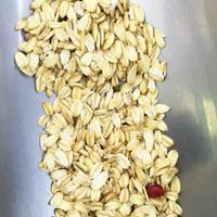 燕麦片的功效与作用 吃燕麦片能有效抗癌