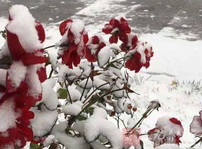 大寒养生 冬季养生保健的关键