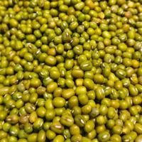 绿豆的功效与作用 吃绿豆能有效抗肿瘤