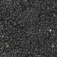 黑米的功效与作用 常吃黑米能抗癌