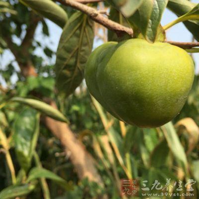 蓝莓的禁忌 腹泻患者千万别吃这种水果