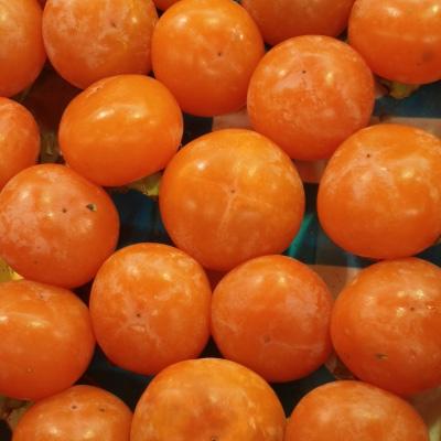 孕妇可以吃柿子吗