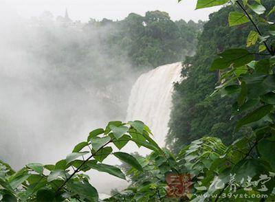 以水势浩大著称,也是世界著名大瀑布之一