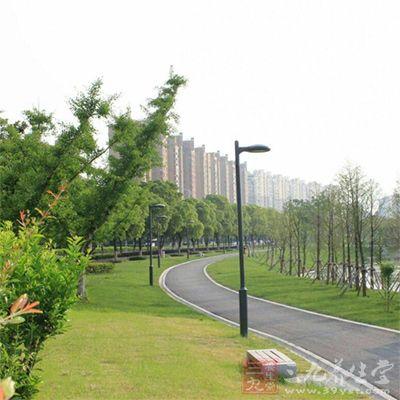 园区风景很好,绿化不错