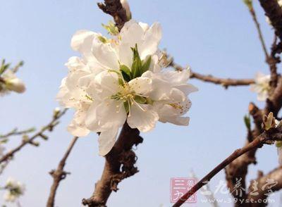 在一年四季中,春天可谓是气候为让人捉摸不定的季节