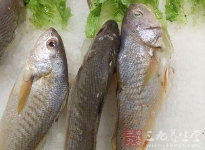 鲈鱼洗净,放入煮沸的药汁中