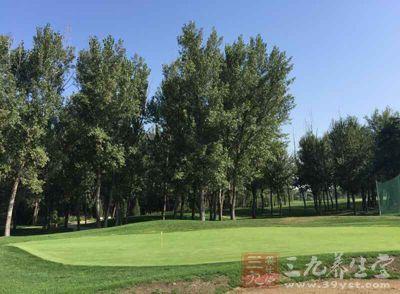 们更加球场的地形地貌将高尔夫场地分为九个大类