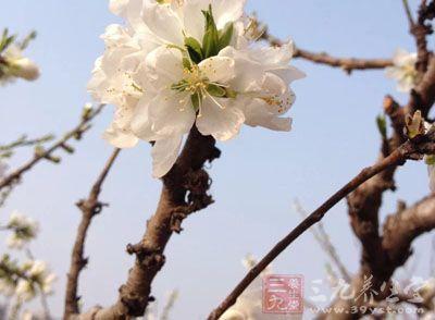 春季拥有健康必做的四件事