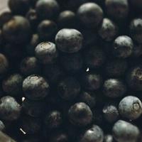 蓝莓的营养价值 吃蓝莓能降低胆固醇
