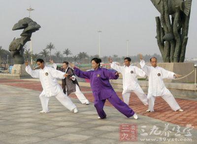 杨式太极拳40式 吴阿敏太极拳视频教学