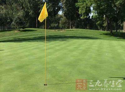 高爾夫現在是一項很熱門的養生運動