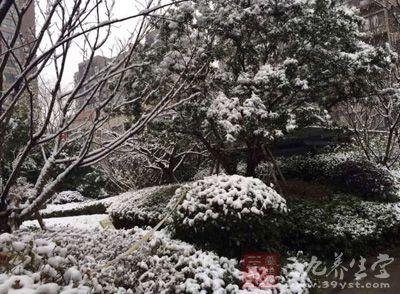 冬季养生保健知识