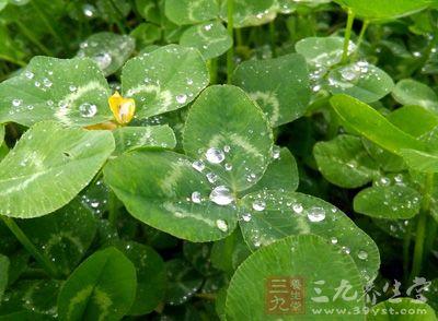 """【有问必答】北京阴雨不同于""""梅雨"""" 拉响预警10次"""