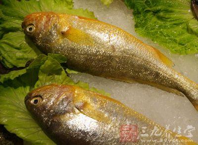 魚皮等富含優質膠原蛋白