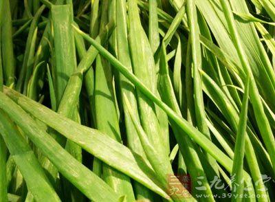 葱白3根,淡豆豉15克,荆芥0.3克