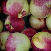 油桃的功效与作用 吃油桃能明目还防癌