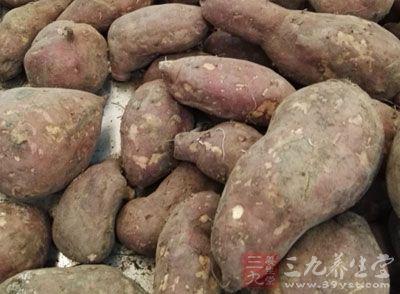 红薯含有丰富的糖、蛋白质